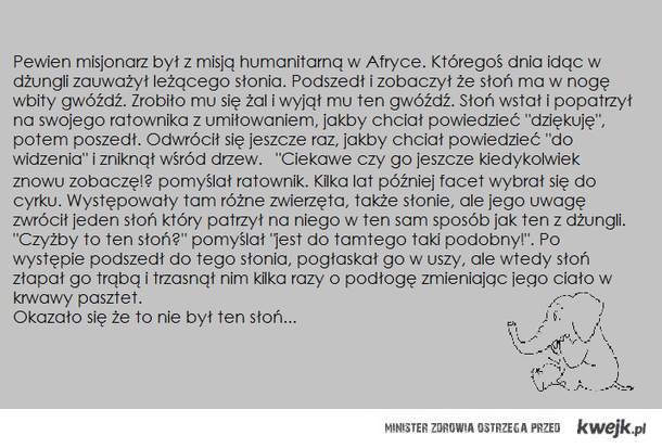 Słonik i jego dobra pamięć ;D