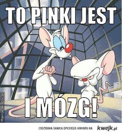 Pinki i mózg