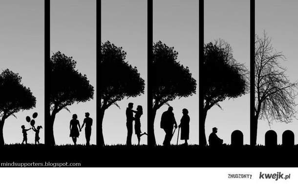 timeline - true story
