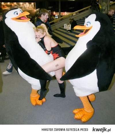 Niegrzeczne pingwiny