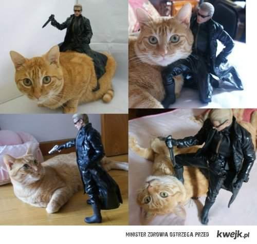 Kot z figurką