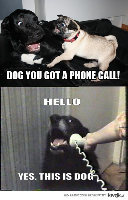 psi telefon
