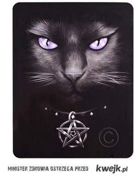 cat & pentagram