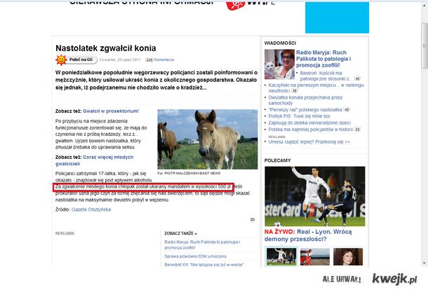 Gwałt na koniu ;)