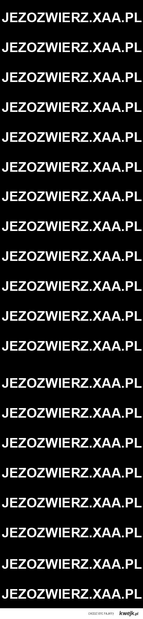 Jezozwierz.xaa.pl