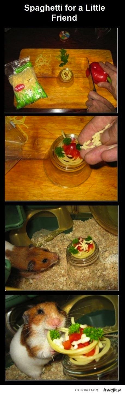Spagheti dla malego przyjaciela
