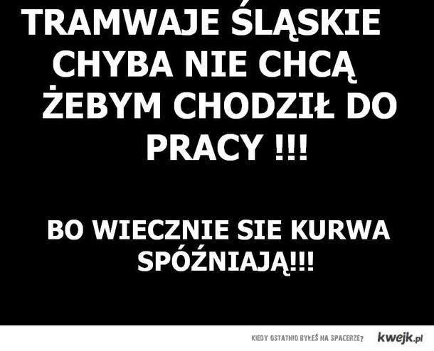 Tramwaje Śląskie