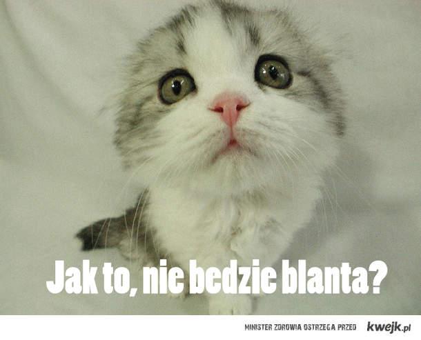 Blant