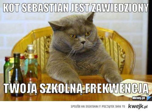 Kot Sebastian