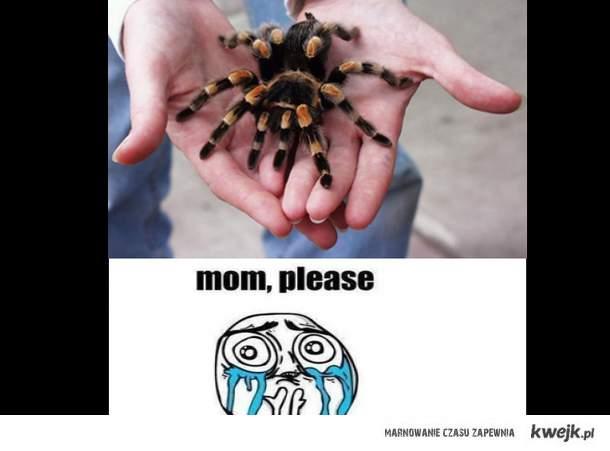 mamo, proszę...