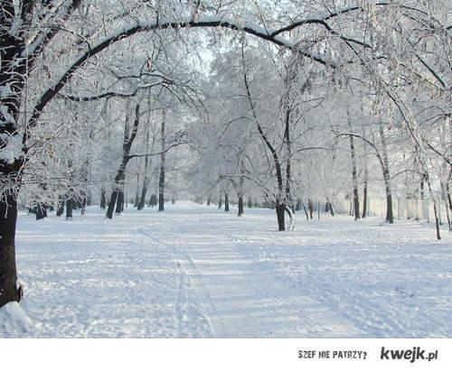 kocham zimę.
