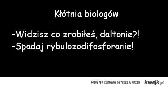 Kłótnia biologów