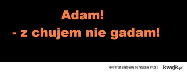 Adam.. z chujem nie gadam!