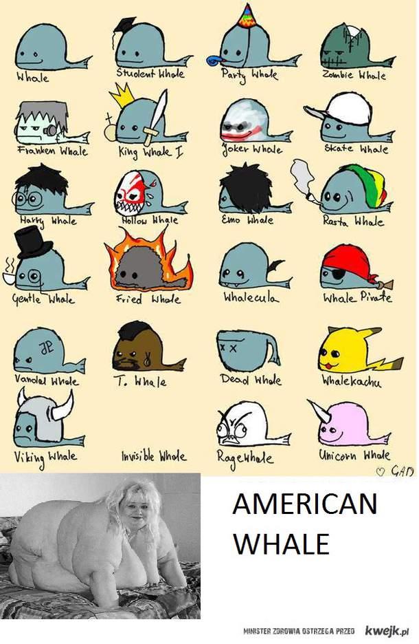 American Whale, A JUSTYNA jest zaje*