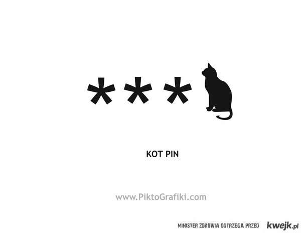 Kot pin:)