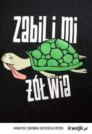 zabili mi żółwia