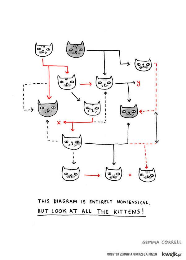 kitten diagram