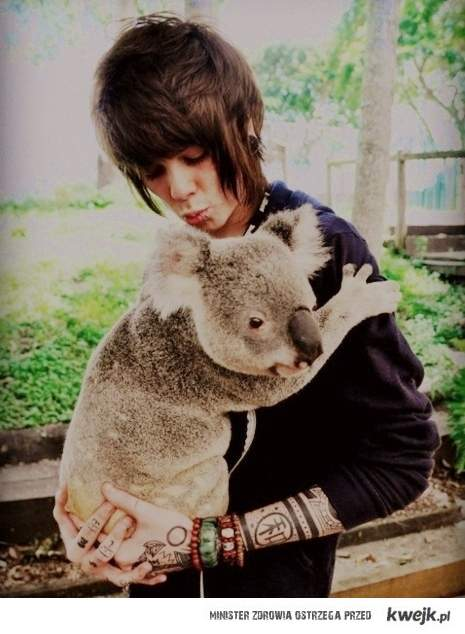 Christofer Drew & Koala