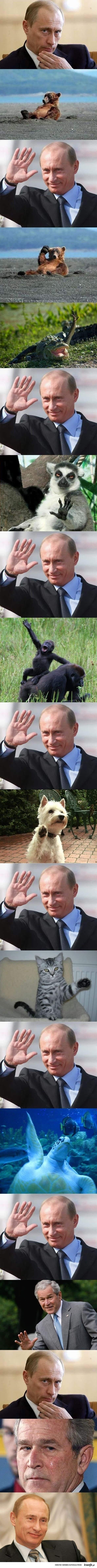 Przyjazny Putin