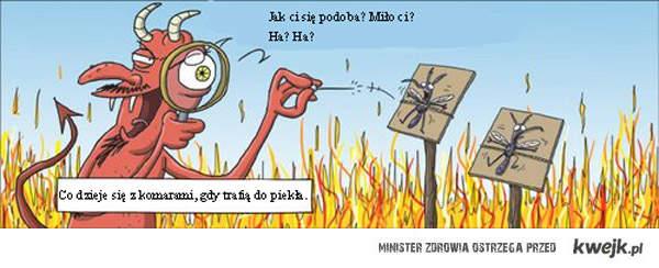 komary w pieke