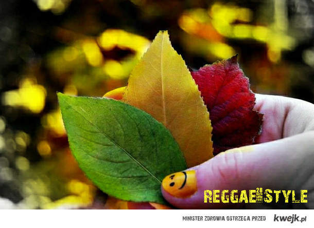 ReggaeStyle