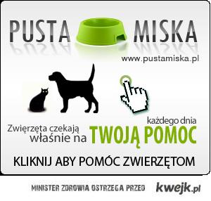 pustamiska.pl