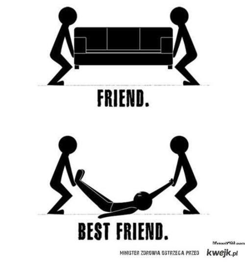 best friends the best