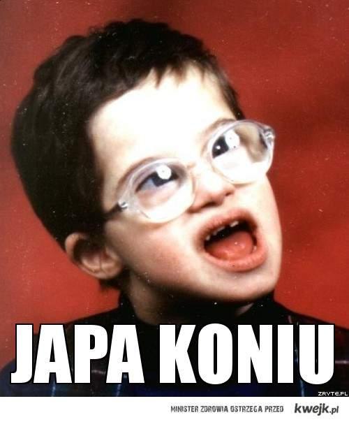 Japa Koniu !