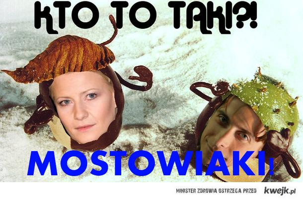Mostowiaki Kasztaniaki