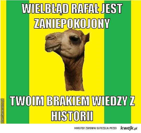 Wielbłąd Rafał
