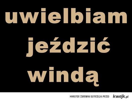 windaxdd