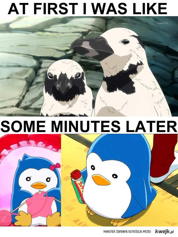 Pingwinki!! xD