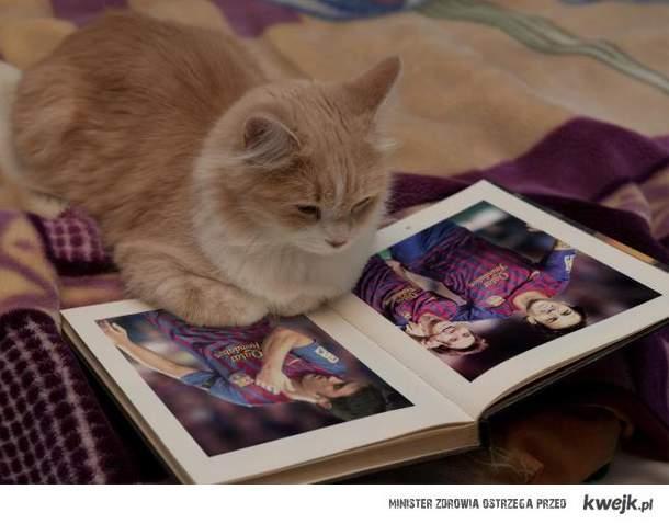 Koty wiedza co dobre.