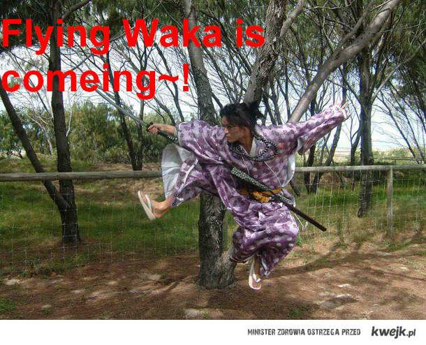 Flying samurai are everywhere