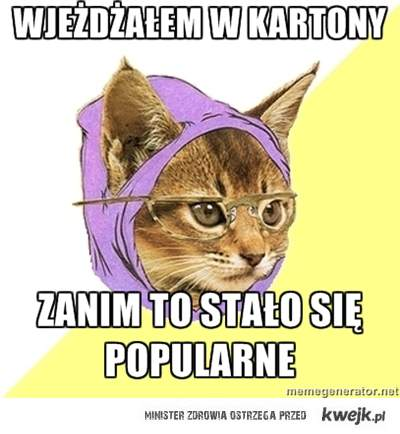 Hipster kitty kartony