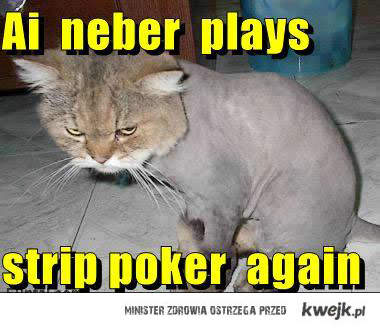 strip poker cat