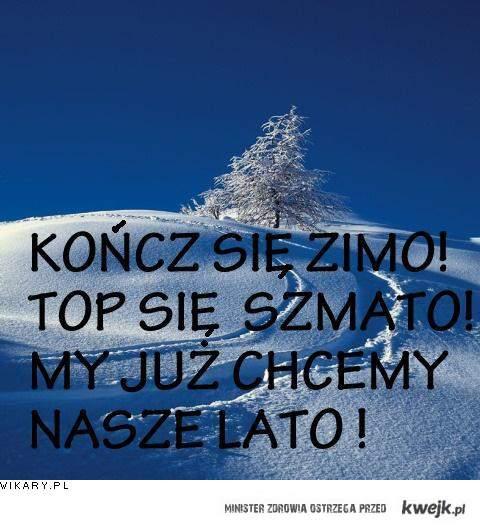 Zimo!