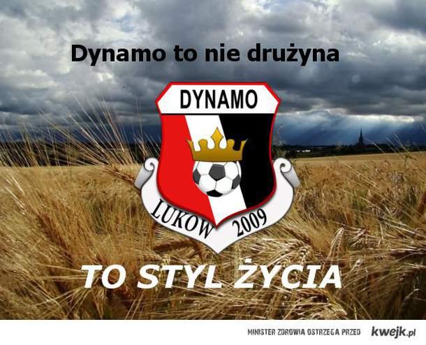 Dynamo <3