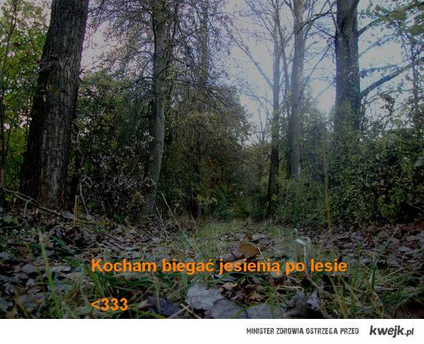 Jesienny bieg..