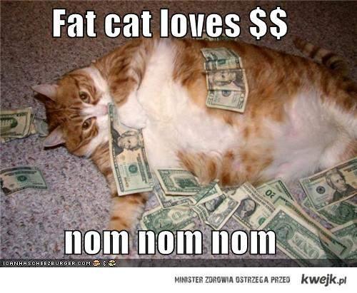 Fat Cat loves money