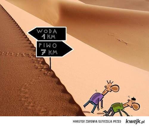 wybór na pustyni