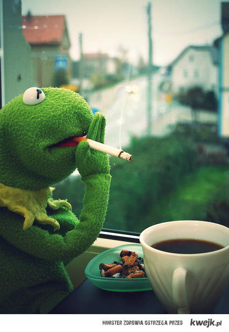 Kermit rano