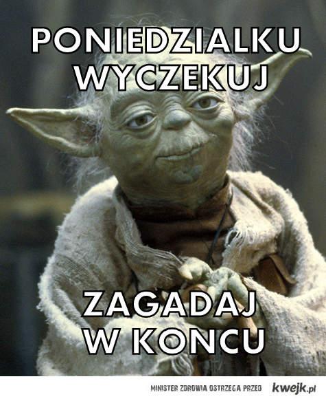 zagadjwkoncu