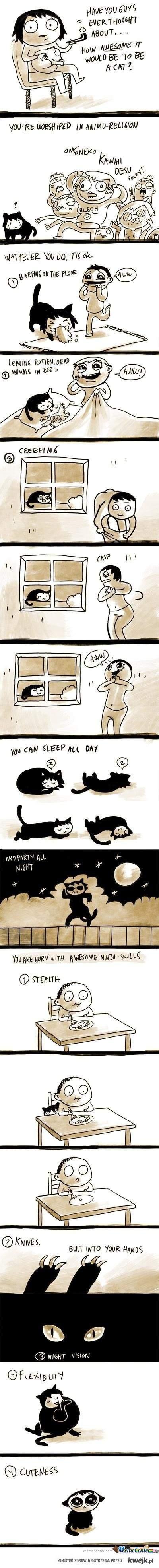 Być kotem