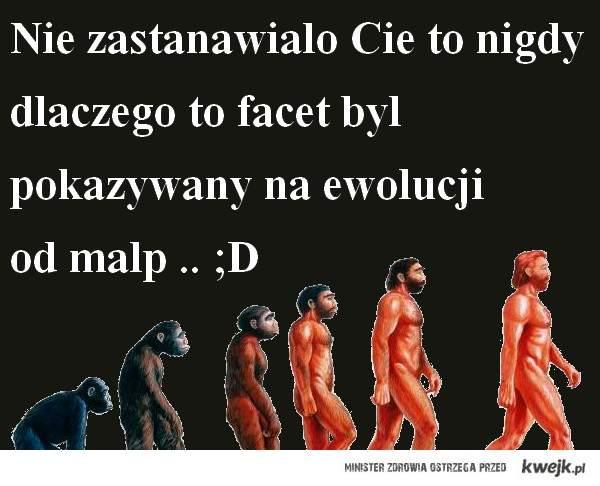Ewolucja od małp po faceta