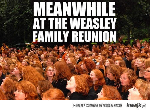 Zjazd rodziny Weasleyów