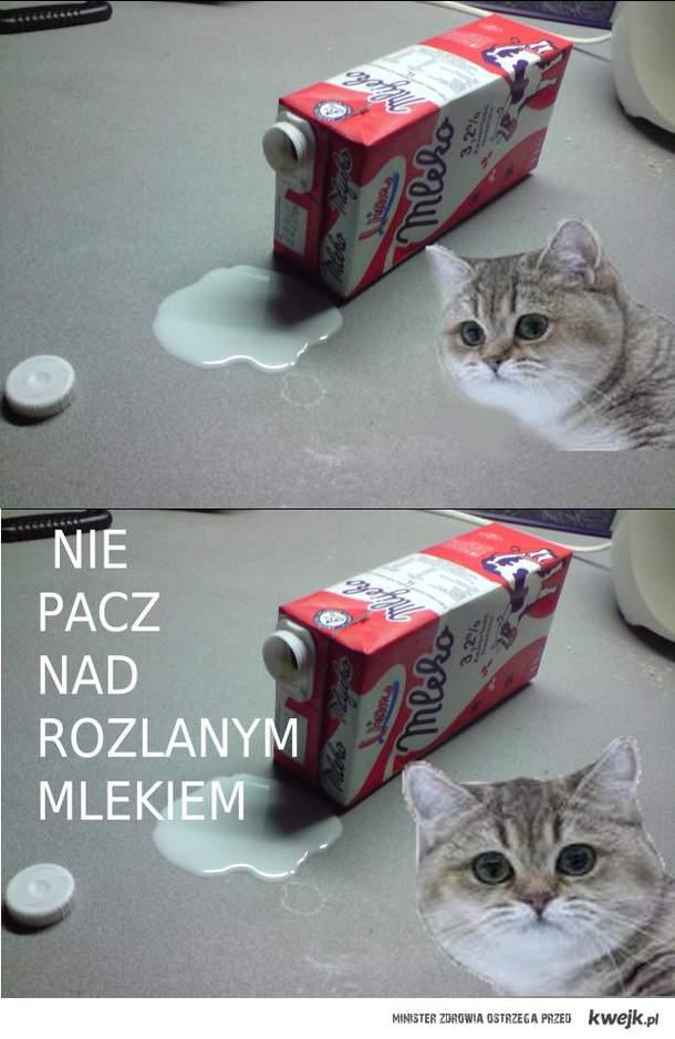 paczenie_z_Łeby