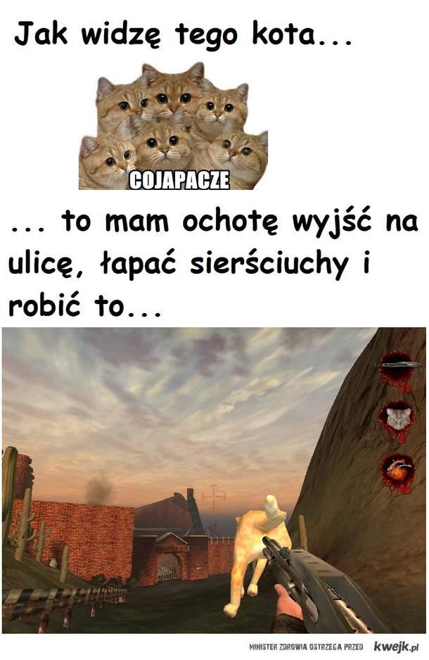 Anty - Cojapacze