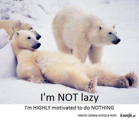 Nie jestem leniwy