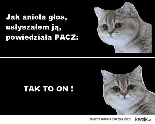 PACZE